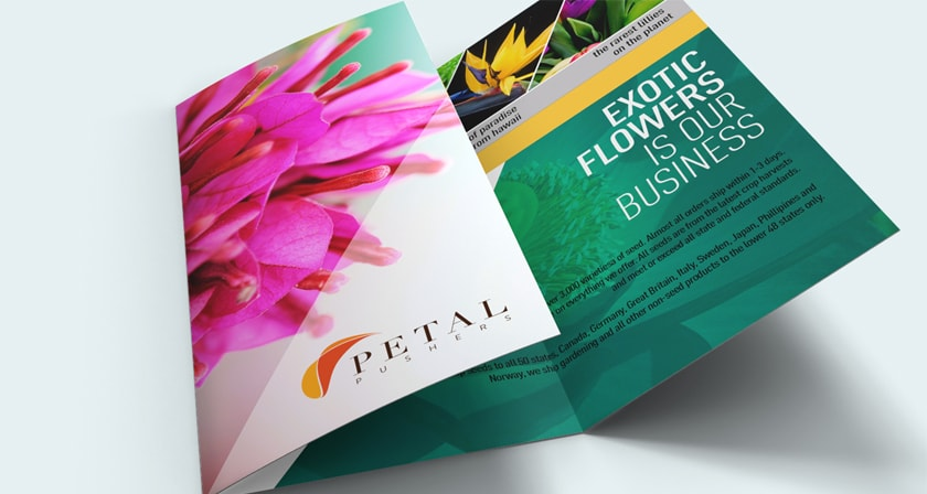 custom 8 5 x 11 brochure professional quality fast delivery